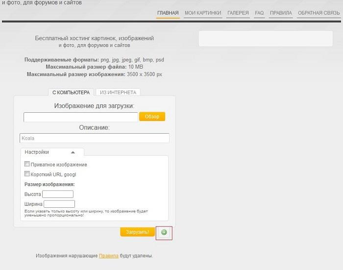купить доменное имя и хостинг