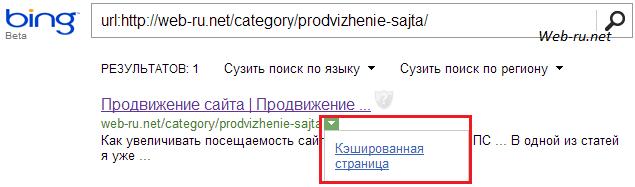 кэш страницы в Bing.com