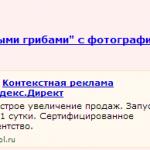 Пример поведенческого таргетинга в Яндекс.Директ