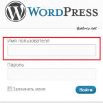wordpress - логин в форме авторизации