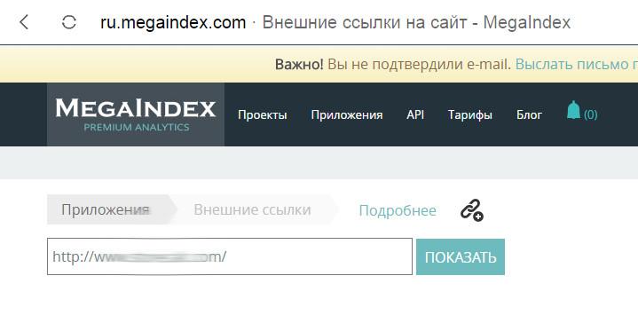 ввод названия сайта для проверки в мегаиндекс