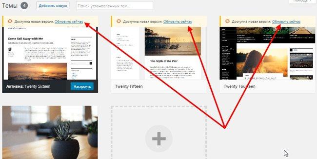 Обновление темы для WordPress